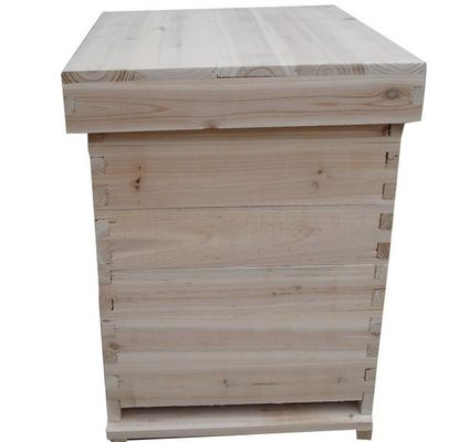 Good Quality Beekeeping Gloves & Wood​ Bee Hive Equipment Langstroth Style Easy To Assemble Natural Material on sale